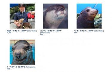 選択肢はトド、アシカ、カワウソ、飼育員… 桂浜水族館の「エサやり企画」が何かおかしいと話題に