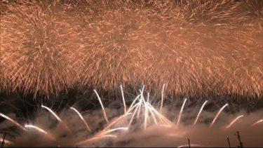 「大曲の花火」見送りも… 子どもたちを花火で元気に 秋田・大仙市