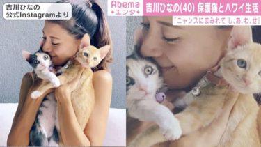 吉川ひなの、2匹の保護猫との幸せな日常 「可愛すぎます」「朝から癒されました」の声