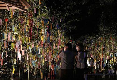 色とりどりの七夕の願い事 京都・貴船神社で笹飾りライトアップ