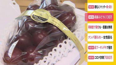 高級ブドウ「ルビーロマン」に130万円 石川