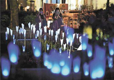 医療従事者へメッセージ 仙台・勾当台公園に感謝伝える青い花