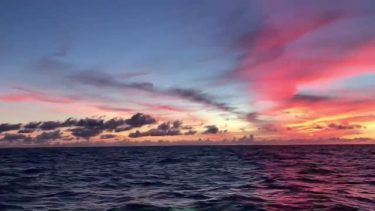 島を離れた娘のもとに…「今朝の海だよ」 石垣島で漁師をしている父親から届いた、朝焼けの動画が話題