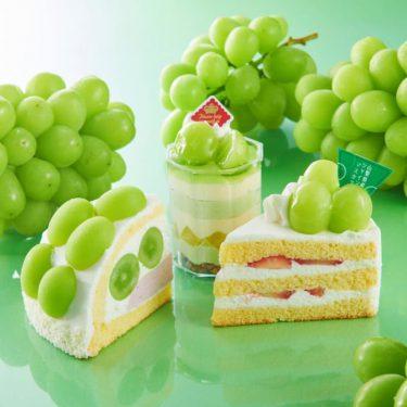見た目でベタ惚れ! シャトレーゼの贅沢「シャインマスカットケーキ」3つ