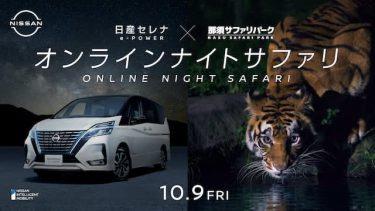 自宅にいながら夜の那須サファリパークを体験!「オンライン ナイト サファリ」開催