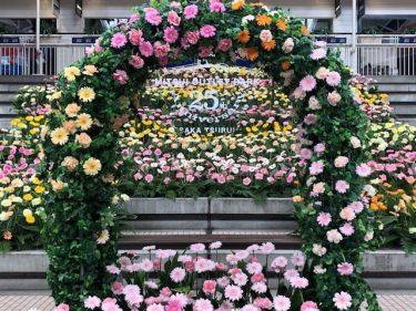 花博があったあの場所で思い出の1枚を… 三井アウトレットパーク大阪鶴見で「お花のフォトスポット」