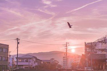 「いつもの道が、特別になった」 まるでアニメのワンシーン…夕焼けに染まった福井の町並みに反響
