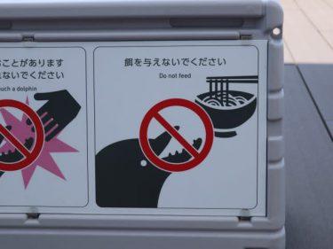 「イルカに餌を与えないで」例がおかしいとネットざわつく 四国水族館「香川県なのでうどんに…」