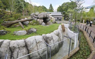 上野動物園「パンダのもり」完成