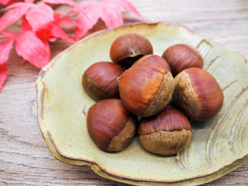 食欲の秋イメージ