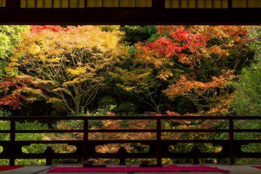 【2020年版】秋を満喫しよう!福岡の紅葉スポット8選