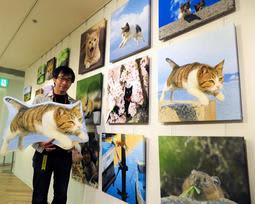 「飛び猫」のカメラマン五十嵐さん企画 愛らしい写真やイラスト250点展示