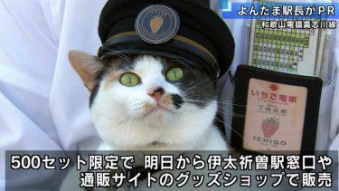 三毛猫「よんたま駅長」 鉄道の日硬券セット販売PR/和歌山