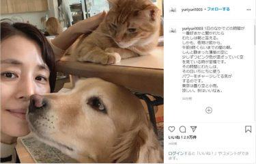 """石田ゆり子、""""至福の時間"""" 愛犬・愛猫たちとの癒しショットにファン反響"""