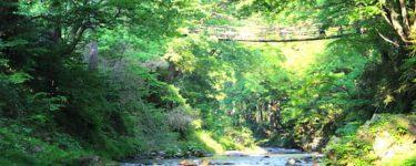 本州ではここだけ!福井のかずら橋はスリル満点の恋愛パワースポットとしても大人気!