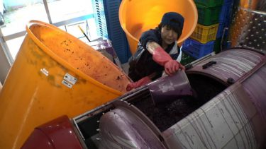 """ワイン醸造家・須合美智子が自身に課す""""セブンルール""""「歳だから無理と言い訳したくない」"""