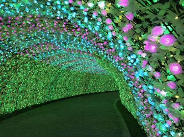 三重・長島温泉 「なばなの里 イルミネーション」今年からバラのトンネルが初登場!