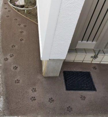 きゃわわ〜。リアルすぎる猫の肉球スタンプ、ウチの玄関にも押しまくりたい!