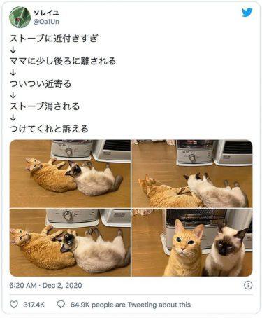 猫さんたちの「ストーブつけてニャ」の圧がすごい…つけたり消したり無限ループの4コマ画像が話題