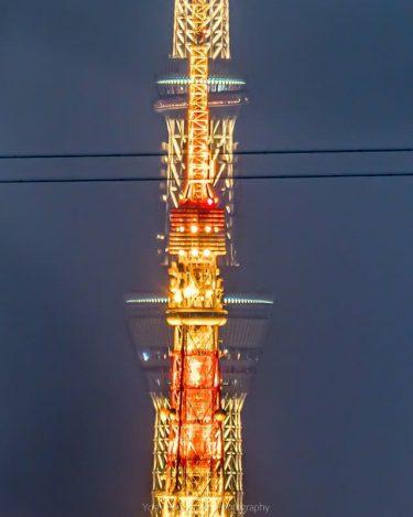 東京スカイツリーと東京タワーが完全に重なる奇跡の写真 撮影者も思わず「手が震えた」