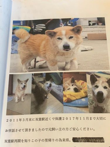「大切にしましたよ」被災した迷い犬の保護者から、元飼い主へのメッセージ…福島・JR双葉駅のノートが話題