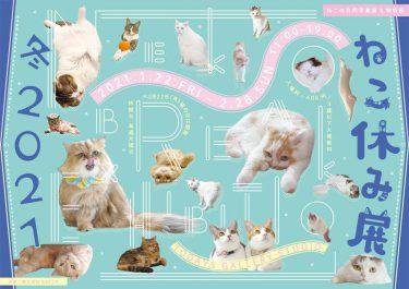 可愛すぎる猫が大集合!冬の「ねこ休み展」が2021年1月~開催!猫の日(2/22)限定企画でプレゼントも