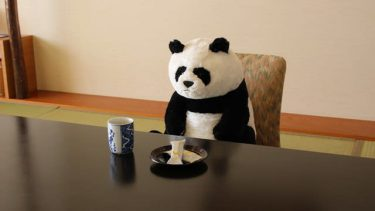 パンダのぬいぐるみが、お菓子の前でお出迎え「待ってる姿が可愛すぎ!」の宿泊プラン…しかも連れて帰れますよ
