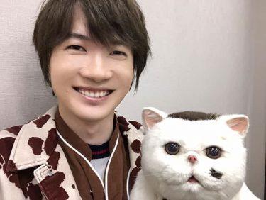 """「おじさまと猫」神木隆之介のかわいすぎる""""にゃああ""""の裏話とは? 「テンションが上がると思わず人間の言葉になってしまいました(笑)」"""