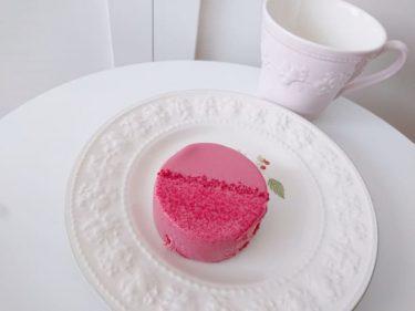 ピンク色が可愛い♪ スタバの新作「ルビーチョコレートケーキ」