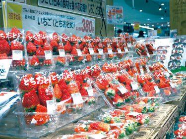 埼玉などイオン30店で「とちおとめ」割安販売 コロナ打撃のイチゴ狩り農園支援 おうち時間にぜひ