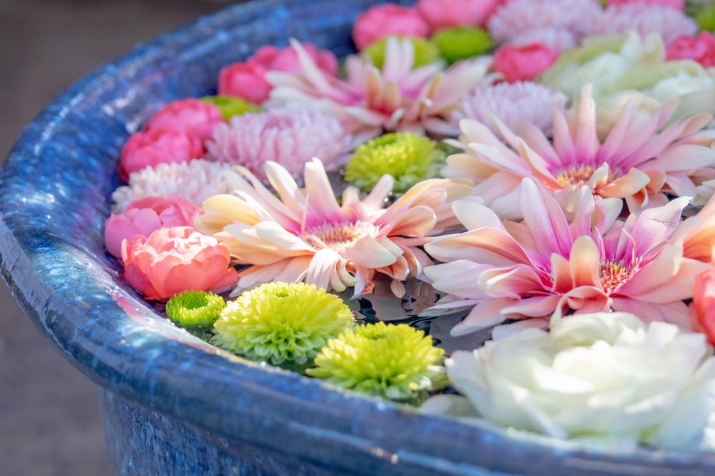 明るいお花のイメージ