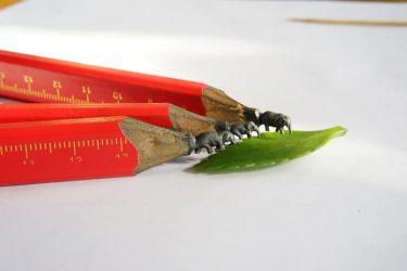 鉛筆の芯が生む極小アート 河北省保定市