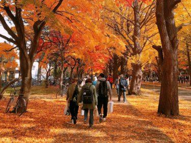 日本で最も美しい通学路。現役生が撮りためた「北海道大学の四季」