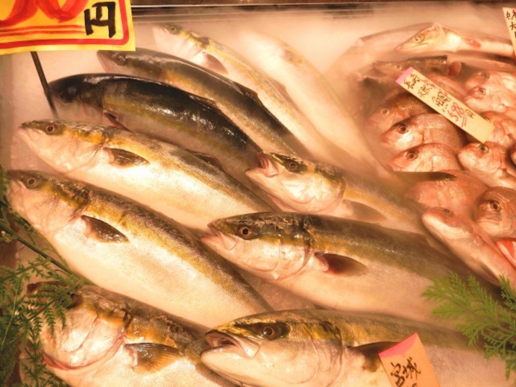 2月に旬を迎える魚介類イメージ