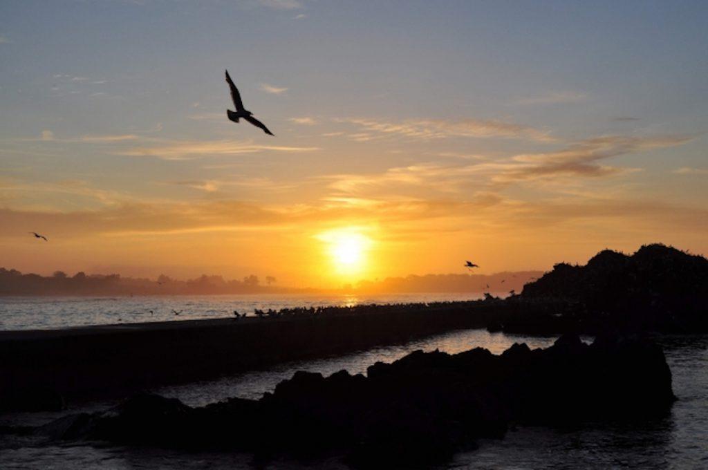朝ドラ「おかえりモネ」のロケ地「気仙沼」の風景イメージ