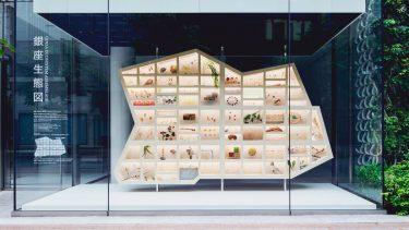 資生堂 ・銀座オフィスのウィンドウアートを起点にサステナブルな未来を考える「GINZA Sustainability Project」開催中