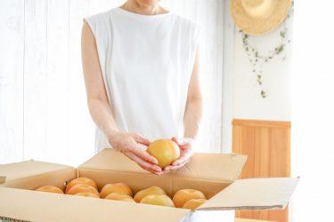 食品ロス通販サイトおすすめ10選|廃棄なんてもったいない!野菜やパンなど人気食材をお得にお取り寄せ