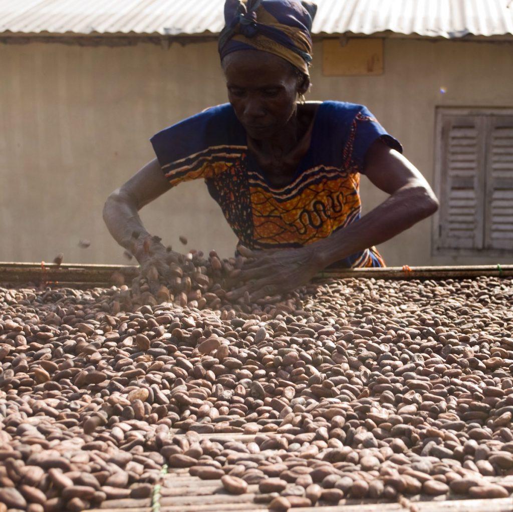 チョコレートの製造過程で起きている問題を知ろう